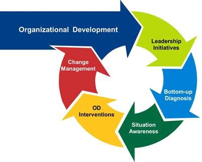 Organizational Development and Culture